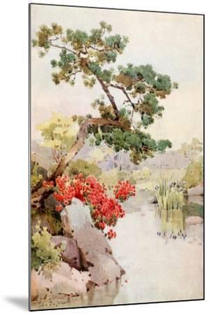 Azalea and Pine-Tree-Ella Du Cane-Mounted Giclee Print