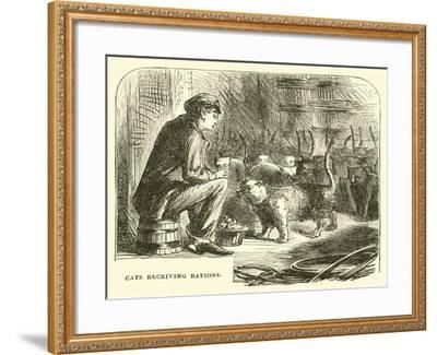 Cats Receiving Rations--Framed Giclee Print