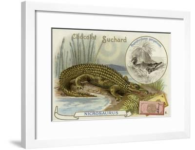 Nicrosaurus and Crocodile--Framed Giclee Print