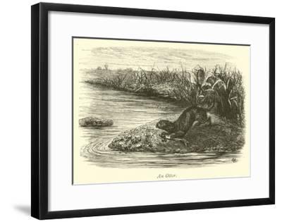 An Otter--Framed Giclee Print