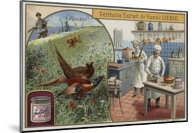Liebig Card Featuring Pheasants--Mounted Giclee Print
