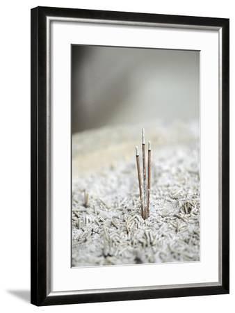 Incense Burners--Framed Photographic Print