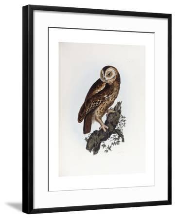 Tawny Owl, 1841-Prideaux John Selby-Framed Giclee Print