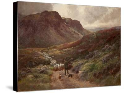 Landscape-Stephen Enoch Hogley-Stretched Canvas Print