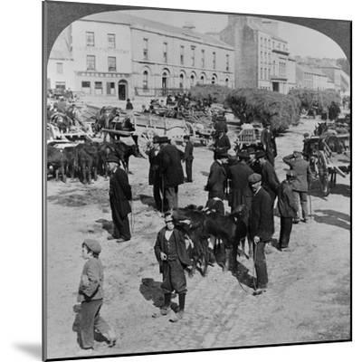 Market, Eyre Square, Galway, Ireland, C.1900--Mounted Giclee Print