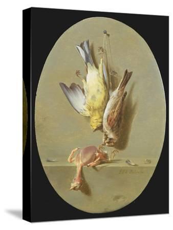 A Trompe L'Oeil of Dead Songbirds-Jean Joseph Xavier Bidauld-Stretched Canvas Print