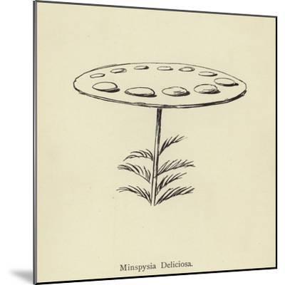Minspysia Deliciosa-Edward Lear-Mounted Giclee Print