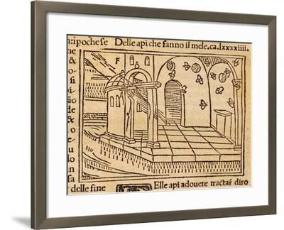 Engraving from De Agricultura Vulgare--Framed Giclee Print