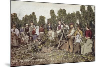 Hop Picking Londoners--Mounted Photographic Print