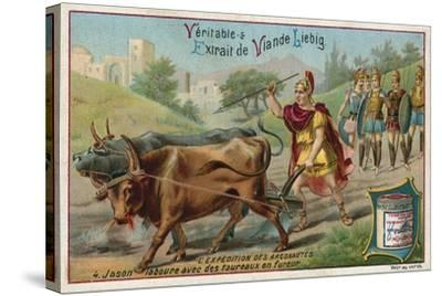 Jason Ploughing with the Fire-Breathing Oxen--Stretched Canvas Print