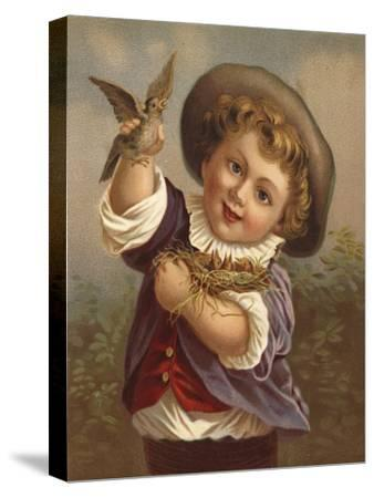 Boy Holding a Bird and the Bird's Nest--Stretched Canvas Print