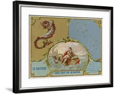 Dolphin - Arion Is Saved by a Dolphin--Framed Giclee Print