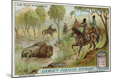 Hunting Bison in a Swamp--Mounted Giclee Print