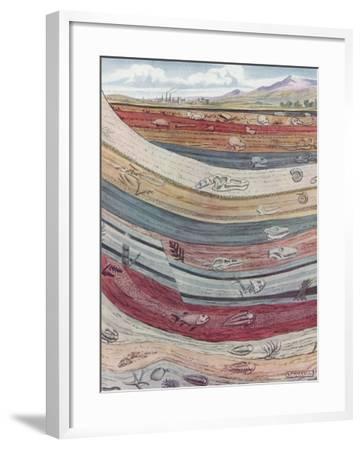 Strata of the Earth's Crust--Framed Giclee Print
