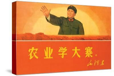 In Agriculture, Learn from Da Zhai, 1969--Stretched Canvas Print