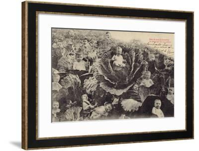 Babies in the Cabbage Patch--Framed Photographic Print