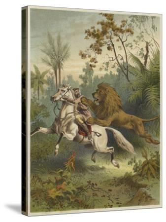 African Traveller Attacked by a Lion--Stretched Canvas Print