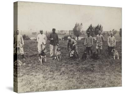 Dogs Being Exercised and Trained by French Soldiers--Stretched Canvas Print