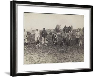 Dogs Being Exercised and Trained by French Soldiers--Framed Photographic Print