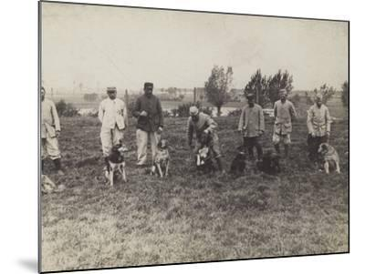 Dogs Being Exercised and Trained by French Soldiers--Mounted Photographic Print