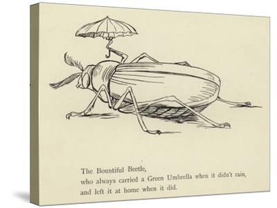 The Bountiful Beetle-Edward Lear-Stretched Canvas Print