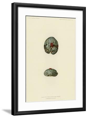 Mosaic Frog from Chaves Pass, Arizona--Framed Giclee Print