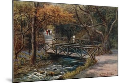 Rustic Bridges, Groudle Glen, I of Man-Alfred Robert Quinton-Mounted Giclee Print