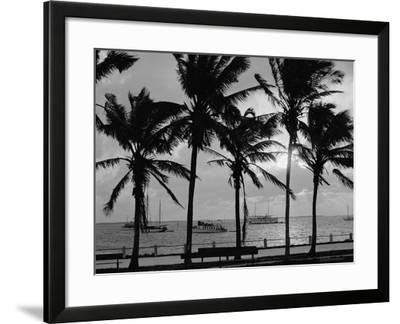 Sunset, Biscayne Bay, Miami, Florida, C.1910-20--Framed Photographic Print