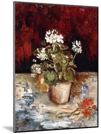 Still-Life Pot of Geraniums, 1886-Vincent van Gogh-Mounted Giclee Print