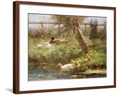 Ducks and Ducklings-David Adolph Constant Artz-Framed Giclee Print