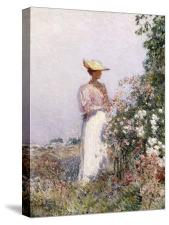 Lady in Flower Garden-Childe Hassam-Stretched Canvas Print