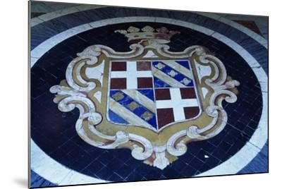 Crest in Grand Masters' Palace, Valletta--Mounted Photographic Print