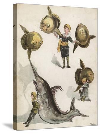 Fish Gymnastics-Richard Andre-Stretched Canvas Print