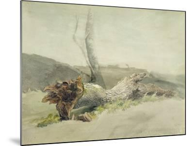 The Fallen Tree, C.1804-Robert Hills-Mounted Giclee Print