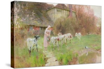 Feeding the Calves-Robert Gustav Meyerheim-Stretched Canvas Print