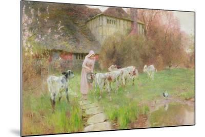 Feeding the Calves-Robert Gustav Meyerheim-Mounted Giclee Print