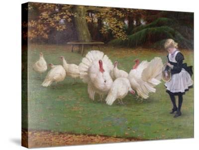Feeding Time-Philip Richard Morris-Stretched Canvas Print