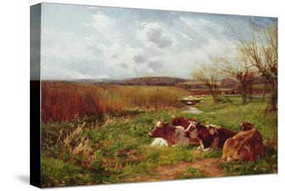 In the Meadow-Charles James Adams-Stretched Canvas Print