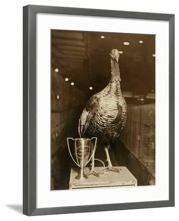 The Grand Champion Gobbler of the World--Framed Photographic Print