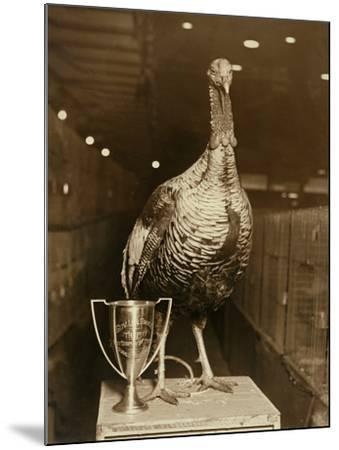 The Grand Champion Gobbler of the World--Mounted Photographic Print