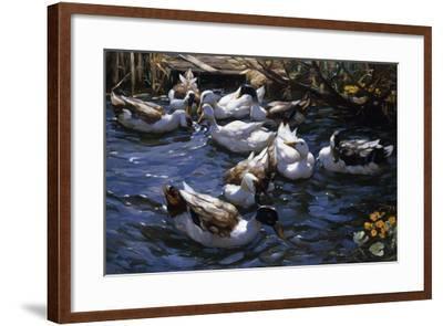 Ducks in the Reeds under the Boughs-Alexander Koester-Framed Giclee Print