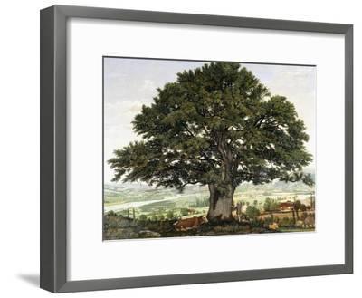 La Plaine D'Annecy-Chene Le Veterant Des Alpes-Jean Jacques Rousseau-Framed Giclee Print