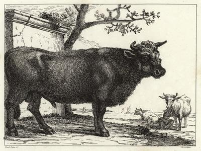 The Bull-Paulus Potter-Stretched Canvas Print