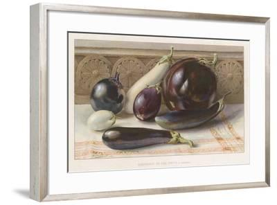 Aubergines or Egg Fruits--Framed Giclee Print