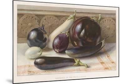 Aubergines or Egg Fruits--Mounted Giclee Print