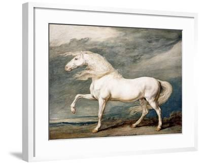 Adonis, King George III's Favourite Charger-James Ward-Framed Giclee Print