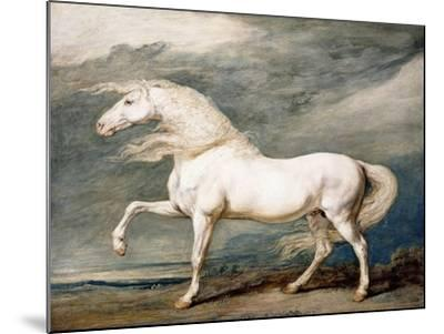 Adonis, King George III's Favourite Charger-James Ward-Mounted Giclee Print