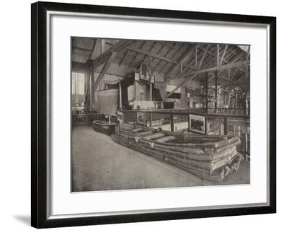 An African Bimba--Framed Photographic Print