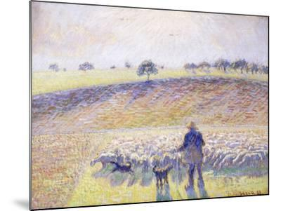 Shepherd with Sheep, 1888-Camille Pissarro-Mounted Giclee Print
