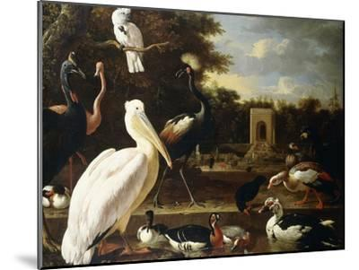Many Different Types of Birds at a Pool in a Park-Melchior de Hondecoeter-Mounted Giclee Print